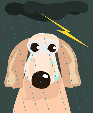 Calming your dog during thunderstorms