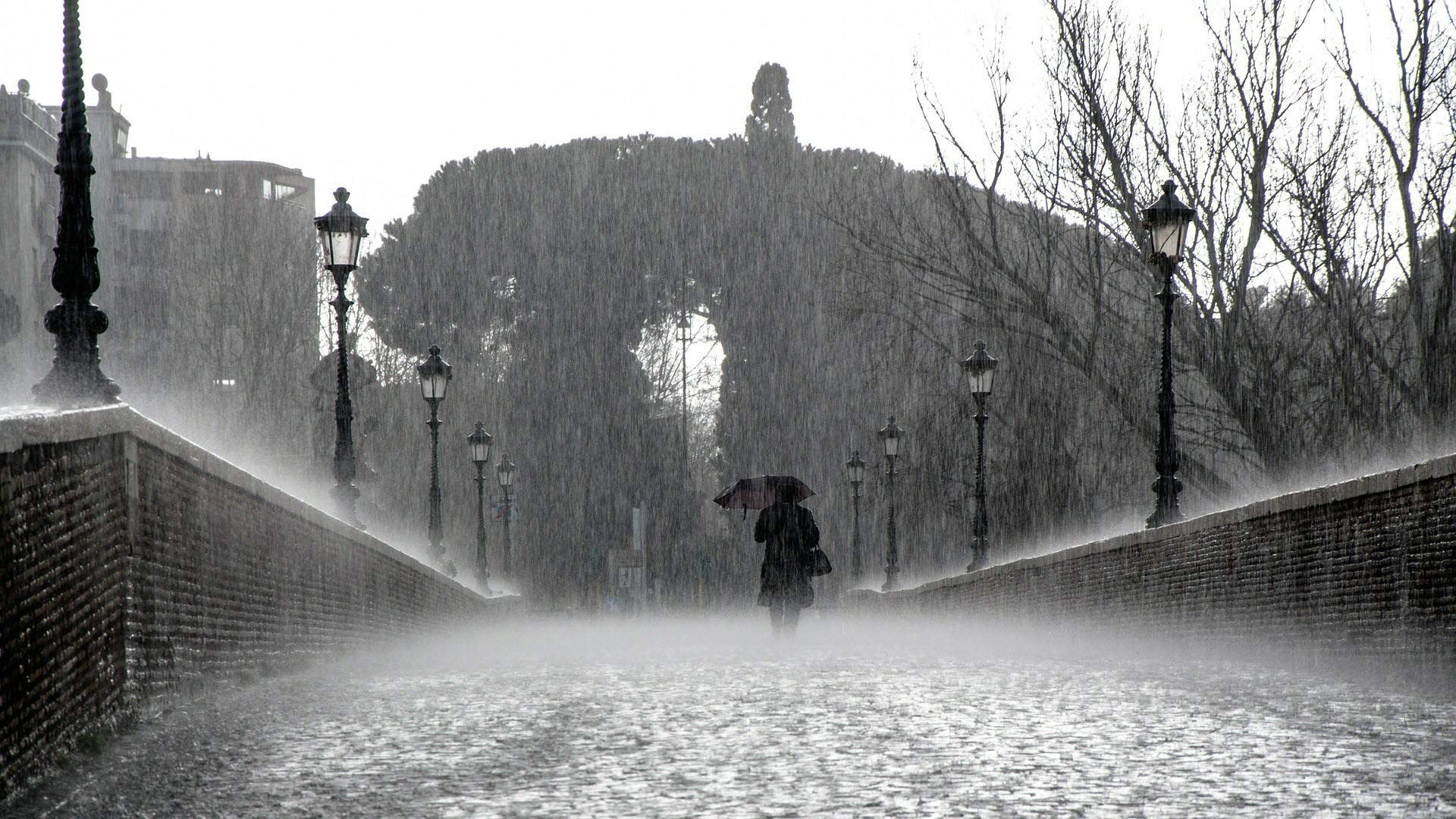 Download FREE Rain Wallpapers - I'm a Pluviophile