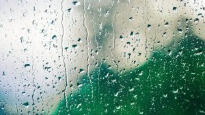 rain on a green windowpain wallpaper