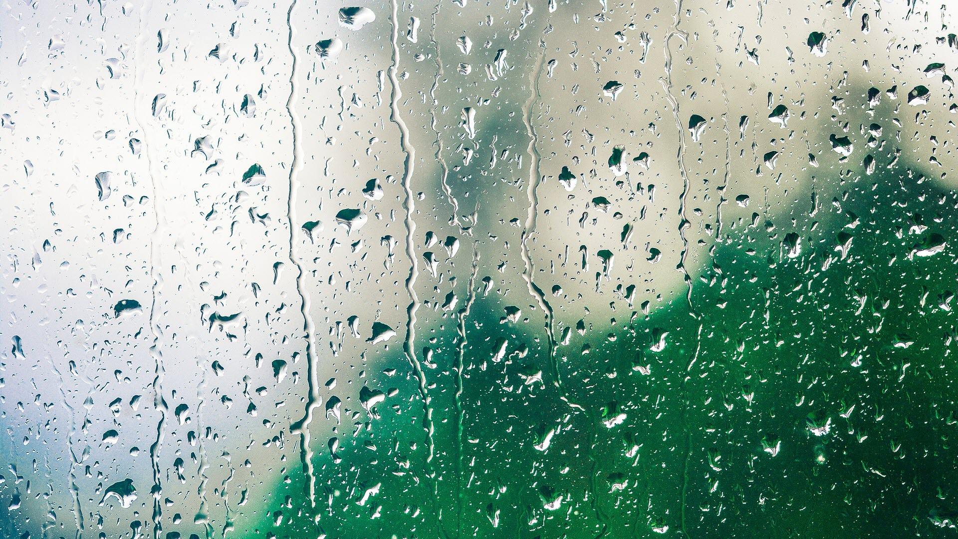 Осень дождь футажи скачать бесплатно footage hd | Осень, Дождь, Видео | 1080x1920